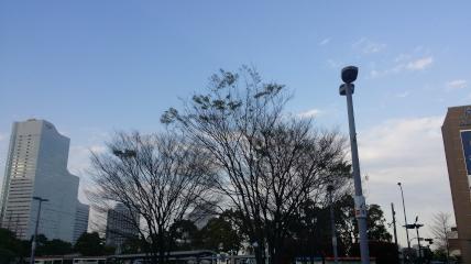 0413_横浜2.jpg