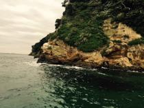 猿島.jpg
